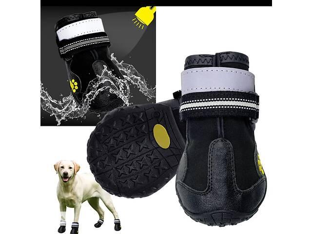 Чобітки для собаки- объявление о продаже  в Борисполі