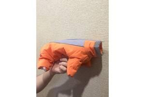 Теплый зимний костюм размера XS(8) для щенка или для маленькой собаки
