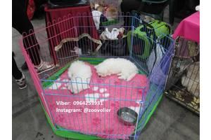 Ясла, бар'єр, клітина, манеж для собак, цуценят з дверкою 120х62х62 Безкоштовна доставка