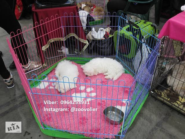 бу Ясли, барьер, клетка, манеж для собак, щенков с дверкой 120х62х62 Бесплатная доставка в Киеве