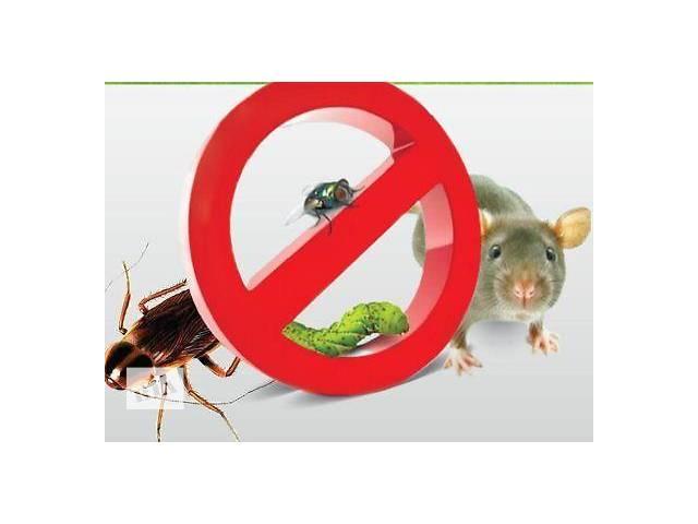 бу Уничтожение вредных насекомых тараканов, пищевой моли, клопов, блох, крыс в Виннице