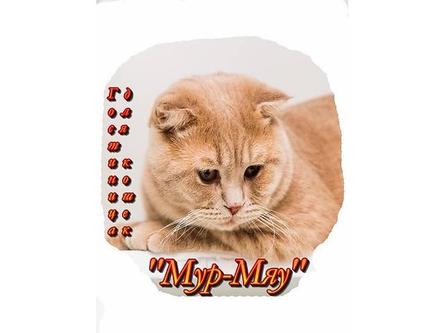 купить бу Мур-Мяу - зоогостиница для кошек, Минск  в Украине