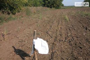Сдается в аренду земельный участок 13.3 соток в Николаевской области