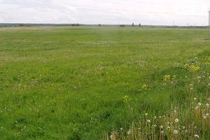 Продається земельна ділянка 622 соток у Херсонській області