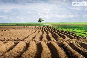 Продається земельна ділянка 8 соток у Волинській області