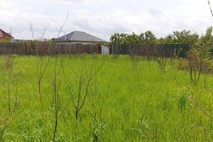 Продається земельна ділянка 18 соток у Закарпатській області