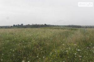 Здається в оренду земельна ділянка 2 соток у Сумській області