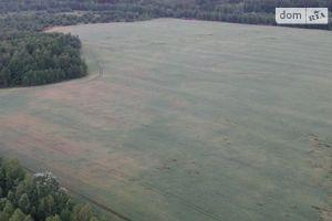 Продається земельна ділянка 5 соток у Чернігівській області