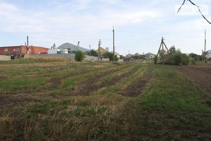 Продається земельна ділянка 30 соток у Тернопільській області