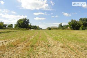 Продается земельный участок 50 соток в Винницкой области