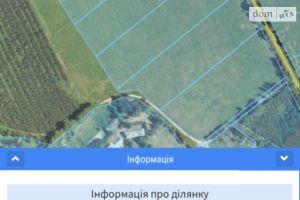 Продается земельный участок 30 соток в Ровенской области