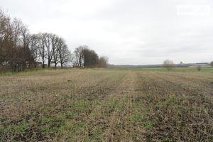 Продається земельна ділянка 45 соток у Вінницькій області