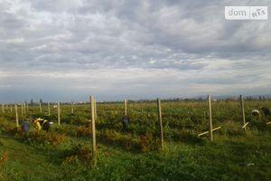 Продается земельный участок 5000 соток в Закарпатской области