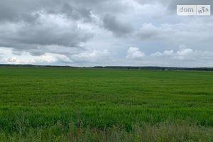 Продается земельный участок 205 соток в Киевской области